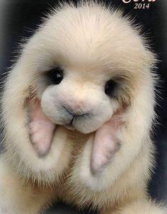 Lop-Eared Mink Bunny by Jenea Ivey