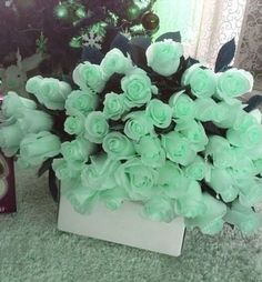 Image about flowers in Mint Green by Amy Melampy Mint Green Aesthetic, Rainbow Aesthetic, Aesthetic Colors, Aesthetic Images, Aesthetic Wallpapers, Mint Color, Green Colors, Pastel Mint, Green Rose