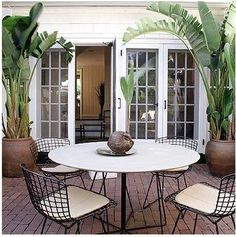 Make the backyard look tropical with these planters