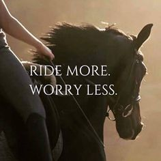 So true! Ride more. Worry less. My Ride, Equestrian… Cute Horses, Pretty Horses, Beautiful Horses, Funny Horses, Equine Quotes, Equestrian Quotes, Equestrian Problems, Western Horse Quotes, Cowgirl Quote