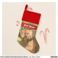 Personalized Dachshund Dog Christmas Stocking Christmas Animals, Christmas Dog, Christmas Card Holders, Christmas Cards, Pet Christmas Stockings, Santa Claus Is Coming To Town, Dachshund Dog, Pets, Holiday Decor