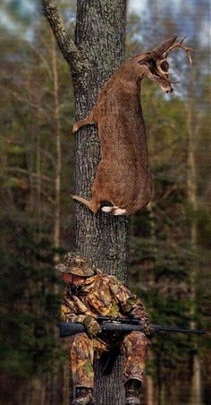 Create and share funny deer hunting graphics and comments with friends. Deer Hunting Humor, Hunting Jokes, Funny Hunting Pics, Girl Hunting Quotes, Deer Camp, Hunting Camo, Hunting Girls, Funny Animal Pictures, Funny Photos