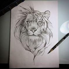 半獅半虎half tiger half lion 好的我想我有一陣子不想看見有毛的生物..... #lion #liontattoo #sketch #ink…