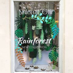 How much is that RAINFOREST in the window? Shlomit Ofir jewelry design shop in Tel Aviv