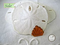 SAVE 10% use coupon code PIN10 SALE MARKED DOWN FROM $2.65. Vintage Czech Art Deco flat back glass fan, beautiful gold color and shape, 1950s/1960s Quantity: 1 Size: 17x14mm ITEM#: 4ADF-V5-14 htt...