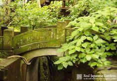 Meigetsu-in | Real Japanese Gardens