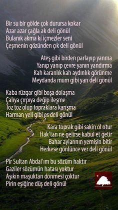 Pir Sultan Abdal : Deli Gönül Anadolu Çınarları poster Baymax, Big Hero 6, Meaningful Lyrics, Life Thoughts, Book Quotes, Cool Words, Islamic Quotes, Quotations, Cool Designs