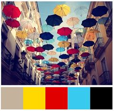 umbrella color scheme