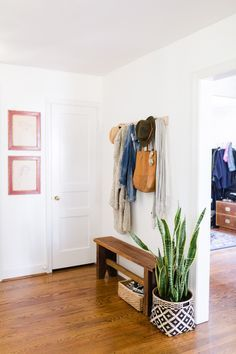 Cottage in Nashville, TN: Entryway/Mudroom (snake plant in basket)  | Design*Sponge