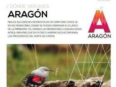 Rutas ornitológicas   Turismo de Aragón