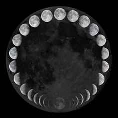Moonlight Muse: Empowering Essential Oils for the New Moon