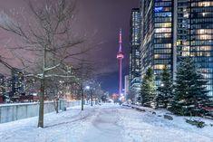 Toronto Views's albums Toronto Snow, Toronto Winter, Visit Toronto, Downtown Toronto, Vaporwave Wallpaper, The Province, City Girl, Canada Travel, City Lights