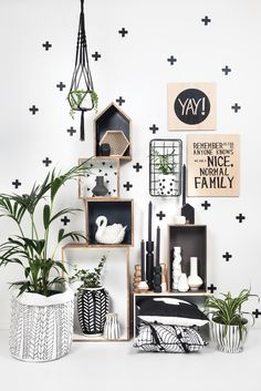 Black & White #General Eclectic