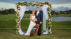 SERVICE DOG ACTS AS BEST MAN AND WEDDING! PACK BUDDY REHABILITATES RESCUE DOGS TO SERVE AS SERVICE DOGS FOR U.S. VETERANS. SAVE A DOG'S LIFE AND SAVE A VETERAN OR CIVILIAN David Utter, Dog Trainer: Service & Therapy Dogs, Behavior Modification, Obedience. Train and Board. (http://dogtrainingorangecountyca.com/)www.DavidUtter.com (www.Pack-buddy.com) 1-888-959-7463