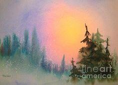 Sunrise Spruce. watercolor by Teresa Ascone