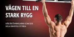 Ryggövningar | Muscles.se - Styrketräning, styrkeövningar, motion & hälsa