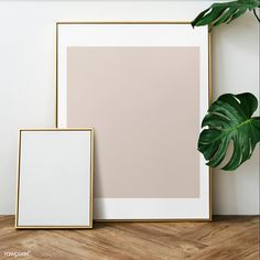 Free and Premium frame images, vectors and psd mockups Gold Photo Frames, Empty Frames, Hanging Picture Frames, Graphic Wallpaper, Brown Walls, White Aesthetic, Flower Frame, Wooden Flooring, Houseplant