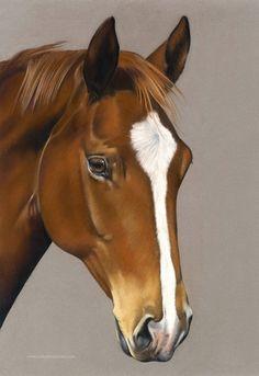 Commissioned pastel painting. Chloe Brown, Horse Artwork, Brown Art, Contemporary Artwork, Pet Portraits, Original Artwork, Wildlife, Pastel, Horses