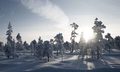 Lapland Retreat – Kind Of Lapland Finland, North Country, Winter, Outdoor, The Great Outdoors, Outdoors