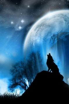 Howling Wolf Photo: This Photo was uploaded by Lady_Quintessa. Find other Howling Wolf pictures and photos or upload your own with Photobucket free imag. Fantasy Wolf, 3d Fantasy, Fantasy Images, Fantasy Artwork, Dark Fantasy, Final Fantasy, Wolf Artwork, Fantasy Castle, Fantasy Setting