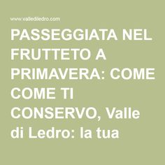 PASSEGGIATA NEL FRUTTETO A PRIMAVERA: COME TI CONSERVO, Valle di Ledro: la tua vacanza al lago fra le montagne del Trentino