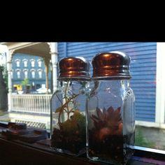 Cute planter idea!