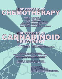 Cannabinoid Treatment vs Chemo