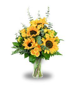 89d94b107bcf Order Summer Sunshine - from Jimmy s Flowers