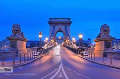 Chain Bridge in Budapest by a2plug  Central Hungary architecture bridge budapest city hungary lights night travel a2plug