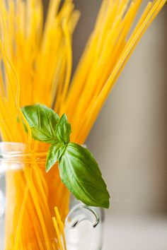 Gluten Free Spaghetti & Basil Leaves by MultipleColors on Creative Market