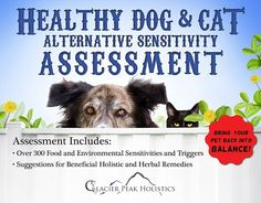 http://store.dogsnaturallymagazine.com/Healthy-Dog-and-Cat-Alternative-Sensitivity-Assessment.html