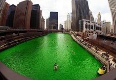 The green Chicago River for St. Patrick's Day