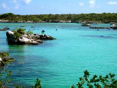 Xel Ha Mayan Riviera Mexico - great place for snorkeling and swimming with dolphins