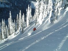 Skiing in Revelstoke, BC from Cheryl Young's Blog [unclear who took the photo]