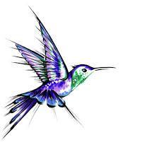 Resultado de imagen para hummingbird drawing tumblr