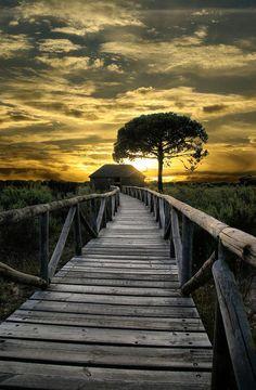 """""""Camino hacia el cielo"""""""