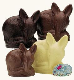 A delicious idea!: Save the Bilby Fund has been raising money through the sale of Chocolate Easter Bilbies, an alternative to the Chocolate Easter Bunny. http://tinyurl.com/2phz6b #Darrell_Lea  #Bilby #Save_the_Bilby