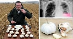 AMAZING: HE ATE GARLIC ON AN EMPTY STOMACH EVERY DAY! HERE'S WHAT HAPPENED – BENX MAGAZINE