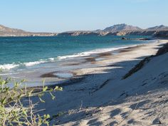 Islands and Protected Areas of the Gulf of California (UNESCO) - Baja California and Baja Califoria Sur, Mexico