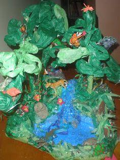 Mariposa Mama: Rainforest Diorama Project