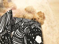 . いつもこの寝相です…😴 . #marimekko#marimekkolife#dog#doglife#instagram#instadaily#instadog#マリメッコ#クルイェンポルヴィ#トイプードル#トイプー#トイプードル女の子#いぬ#いぬとの暮らし#いぬバカ部#愛犬#おやすみなさい