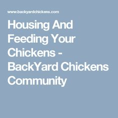 Housing And Feeding Your Chickens - BackYard Chickens Community