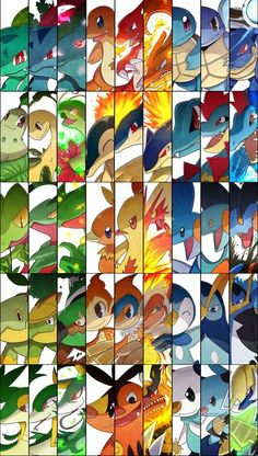 Starters Collage