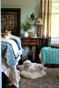 Home and pets of Paul & Amy Hamilton via Design*Sponge - eclectic well lived in and loved bedroom...love it minus the pups