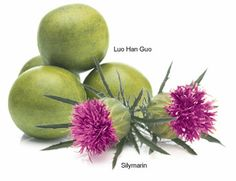 The exclusive, antioxidant-rich botanical complex