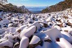 Mount Wellington with a view of Hobart, Tasmania Tasmania, Hobart Australia, Small Island, Seaside, Beautiful Homes, Landscapes, To Go, Wildlife, Places