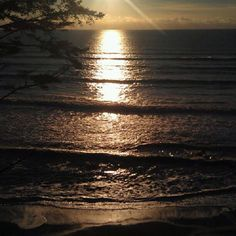 Pacific coast Washington state