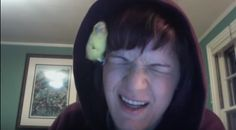 WATCH: Budgie in the Hoodie   I Love Parakeets