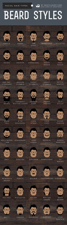 Beard Styles And Facial Hair Types For Men Infographic Chart
