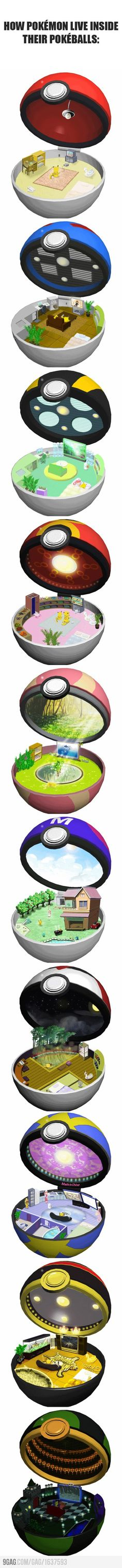 How Pokemon live inside their pokeballs (lol inside my heart)